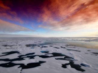 arctic-139396