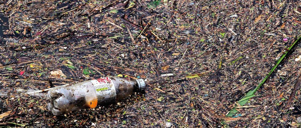 plastica mare economia circolare