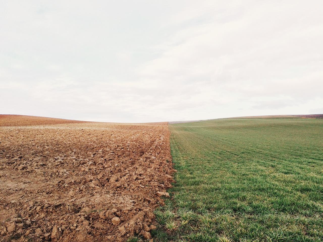 agricoltura clima Italia
