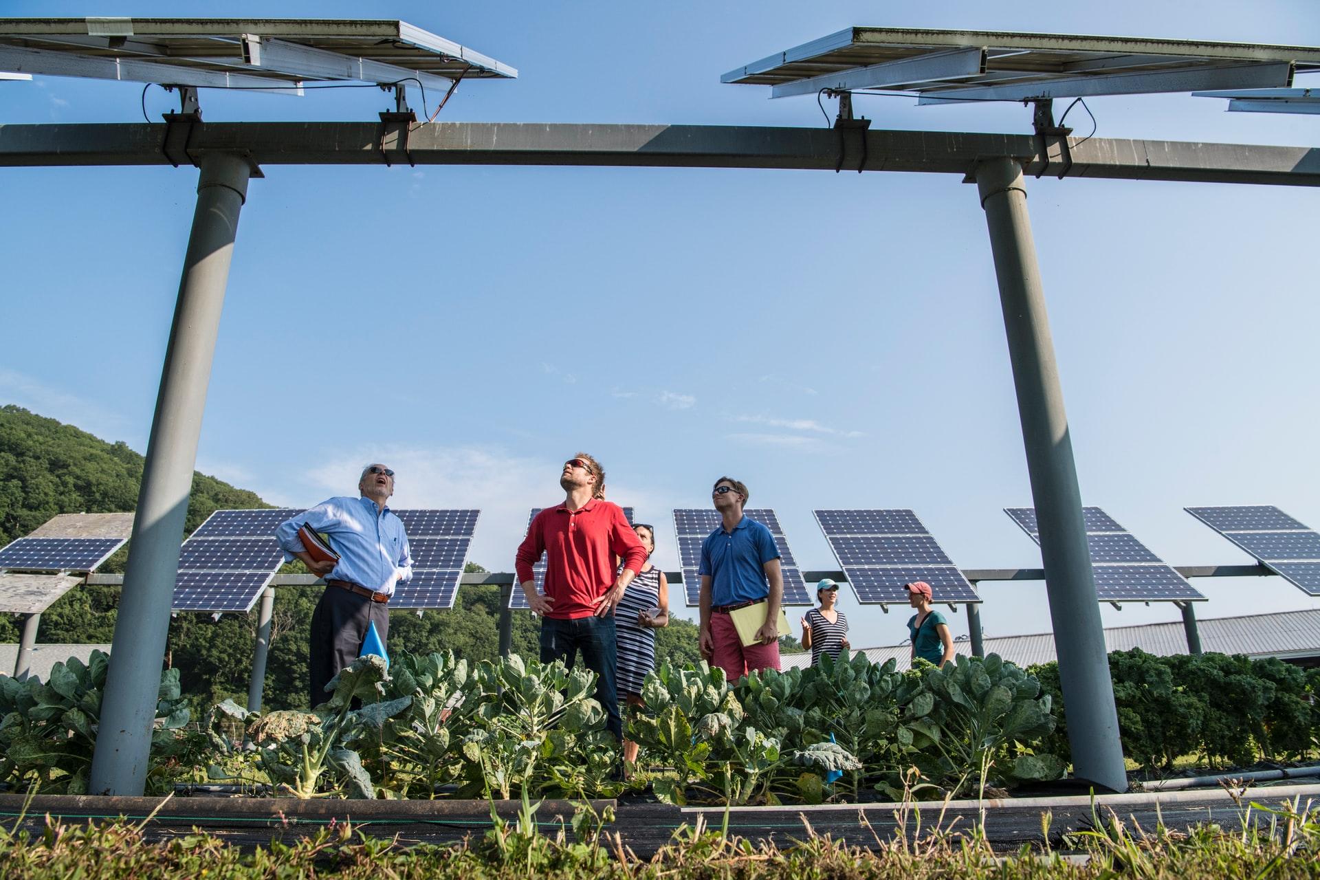 fotovoltaico lavoro jobs 2